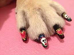 Thought Cat Nail Art Elegant