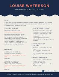 Best Resume Samples For It Freshers by Perfect Entry Level Resume Examples Resume Examples 2017