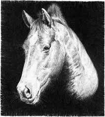 drawing horses pencil drawing joshua nava arts