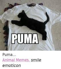 Puma Meme - puma humort puma animal memes smile emoticon animals meme on me me