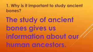 ancient civilizations study guide ppt download