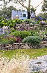 Amenagement Parterre Exterieur by Un Jardin Breton D U0027agapanthes Et D U0027hortensias Bleus Gardens