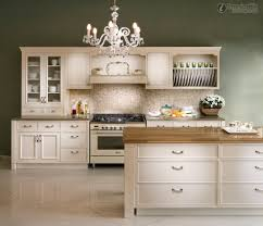 Kitchen Cabinet Chicago European Style Kitchen Cabinets Chicago Kitchen Ideas Homes