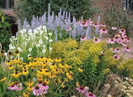 Backyard Flower Gardens by Best 20 Wild Flower Gardens Ideas On Pinterest Wild Flower