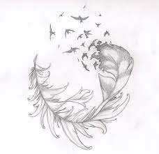 feather n birds tattoo drawing photos pictures and sketches