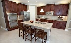 kitchen collection st augustine fl 17 best kitchens by lennarjax images on counter tops