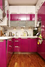 pink kitchen ideas endearing pink kitchen cabinets spectacular home designing