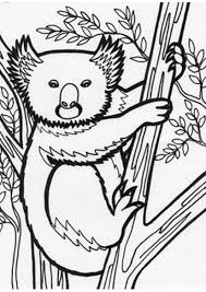 coloring pages of koala on a tree coloring pages