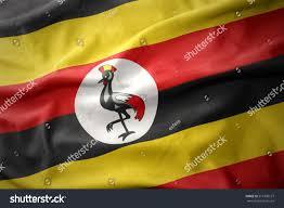Images Of Uganda Flag Waving Colorful National Flag Uganda Stock Illustration 516309127
