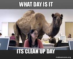 Clean Up Meme - what day is it its clean up day hump day camel make a meme