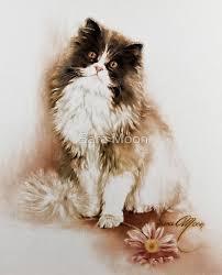 30 beautiful cat drawings u2013 best color pencil drawings and