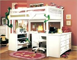 Space Loft Bed With Desk Twin Bed With Desk And Storage Loft Beds With Desk Loft Beds With