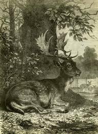 printsplace portrait of an austrian hunter
