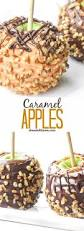 best 20 gourmet candy apples ideas on pinterest gourmet apples