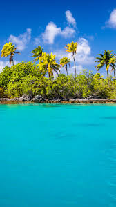 exotic blue lagoon android wallpaper free download