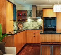 kitchen bamboo kitchen cabinets in voguish different design with