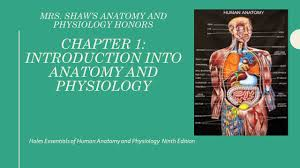 What Is Human Anatomy And Physiology 1 Holes Essentials Of Human Anatomy And Physiology Ninth Edition