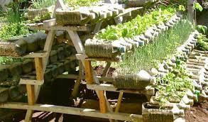 ingenious idea container gardening for beginners imposing design