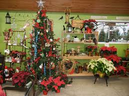 christmas season at valley nursery in poulsbo kitsap now
