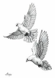 dove drawing u2026 the art of tattoos pinterest dove drawing