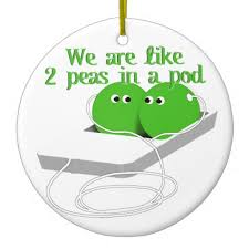 best friend sayings like two peas in a pod similiar two peas