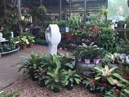 garden centre 6585 5764 bonny hills garden centre