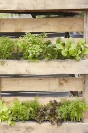 already time to start planning your vegetable garden