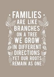 family quotes family quotes inspirational