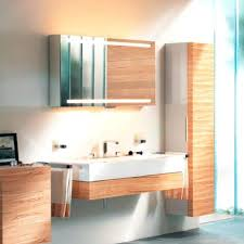 modern bathroom cabinetryedition mirror cabinet from modern