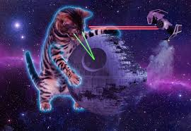 cat universe wallpaper free space cat wallpapers free long wallpapers