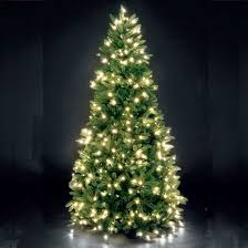modern ideas lighted christmas tree there are more trees