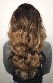 white hair with black lowlights top 30 golden brown hair color ideas