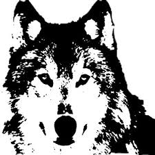 wolf face coloring page best 25 wolf stencil ideas on pinterest wolf silhouette wolf