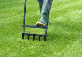 lessons for aerating your lawn in the spring best pick reports