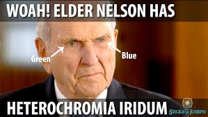 Nelson Meme - if i learned one thing from the missionary broadcast lds and book