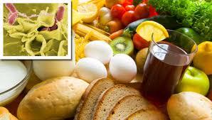 salmonella foodsafety gov