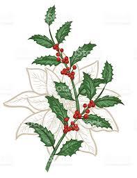botanical christmas plants ornament stock vector art 611903964