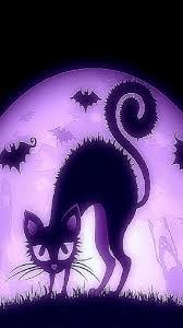 1080 x 1920 halloween background simplywallpapers com suspicious halloween humor pumpkins vector