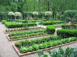 Front Yard Vegetable Garden Ideas Attractive Vegetable Garden Best Gardening Images On Agriculture