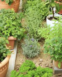 10 photos gallery of a simple herb garden design for the perfect
