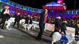 denver parade of lights 2017 sheraton denver downtown hotel parade of lights