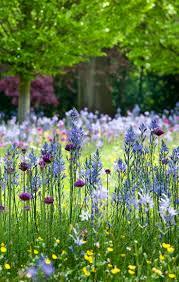 best 20 pallet garden box ideas on pinterest gardening