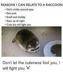 Meme Generator Raccoon - reasons i can relate to a raccoon dark circles around eyes eats