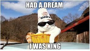 I Had A Dream Meme - had a dream i was king cat weknowmemes