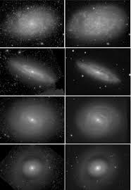 Galaxy 2000 Floor Sander by Mid Infrared Galaxy Morphology From The Spitzer Survey Of Stellar