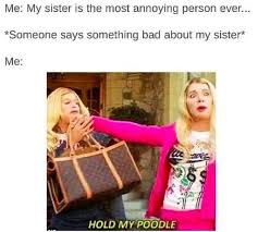 Memes About Sisters - best 25 funny sister ideas on pinterest 重庆幸运农场倍投方案