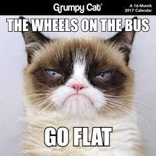 Grumpy Cat Meme Pics - grumpy cat mini wall calendar 2017 day dream 9781629059754