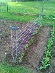 How To Make Trellis For Peas 11 Recycled U0026 Natural Materials For Free Trellis U0026 Arbor Ideas