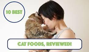 best wet cat food 2017 u0026 2018 purrfect cat diet