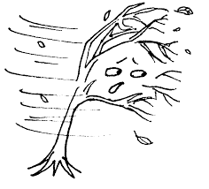 images about wind on drawing hair simple line clipart cliparting com